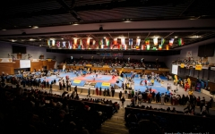 German Open 2013